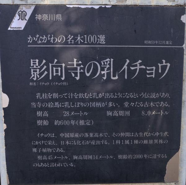 20131128_1_2